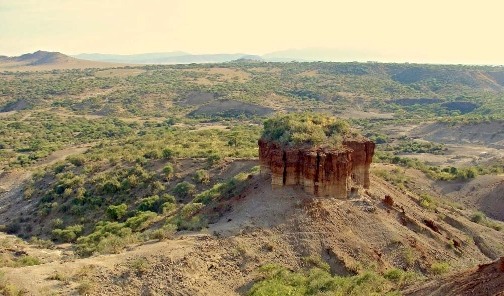 A complete Guide on getting to know the olduvai gorge
